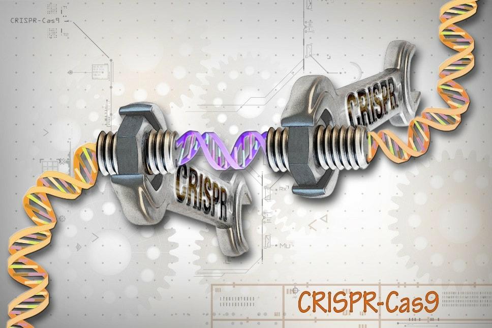 Crispr Cas-9